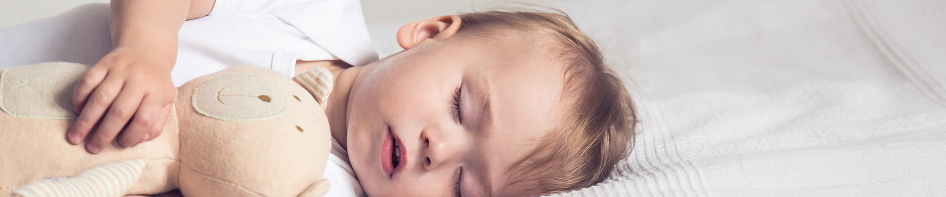 bebedu Hakkında-2386